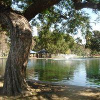 John Anson Ford Park, Bell Gardens, California, Белл-Гарденс