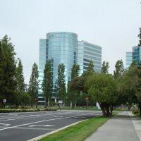 Oracle HQ View, Белмонт