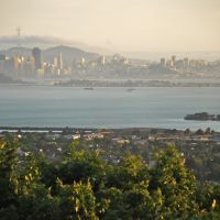 View to San Francisco From North Berkeley Hills, Беркли