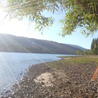 Bass lake, Блит