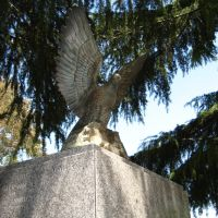 Vietnam Memorial Eagle, Вакавилл