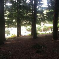 Pena Adobe Hike, Вакавилл