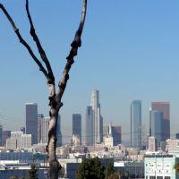 L. A. Down Town, Вернон