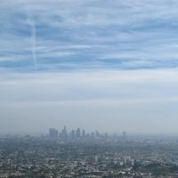 @LOS ANGELES, Вернон