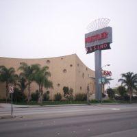 Hustler Casino, Гардена
