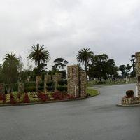 Olivet Memorial Cemetery, Дейли-Сити