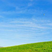 blue sky, Дейли-Сити