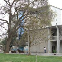 Olson Hall and Sproul Hall, UC Davis, Дэвис