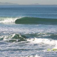 No surf here, Империал-Бич