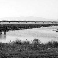 Palo Alto Wetlands, Ист-Пало-Альто
