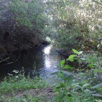 San Antonio Creek flowing under Arnez Grade, Каситас-Спрингс