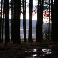 Sunrise at Bass Lake, Кингсбург