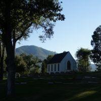 Oakhurst Cemetery, Кипресс
