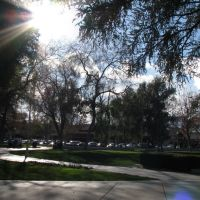January Afternoon in Todos Santos Plaza, Конкорд
