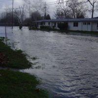 2005 Flood: Coast Guard Housing(Quinalt Village) on Hamilton Ave Looking towards Olivera Road, Конкорд