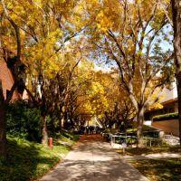 Biola University, Ла-Мирада