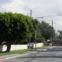 Shadybend Dr. Hacienda Heights California, Ла-Пуэнте
