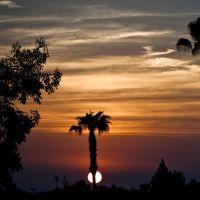 California Sunset, Ла-Хабра