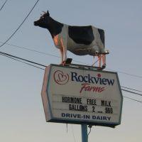 Got Milk? Mooo!, Лейквуд