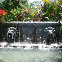 Fountain Plaza Mexico, Линвуд