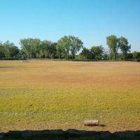 Lodi Lake Dry, Лоди