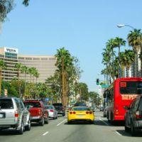 Long Beach (ロングビーチ), Лонг-Бич
