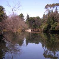 Long Beach Nature Center, Лос Аламитос