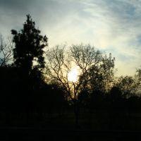 El Dorado Park, Лос Аламитос