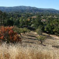 Los Altos Hills, California, Лос-Альтос