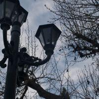 Lamp, Лос-Альтос