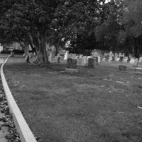 graves, Лос-Альтос