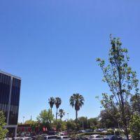Blue skies, Лос-Альтос