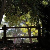 Vasona Park, Los Gatos, CA, Лос-Гатос