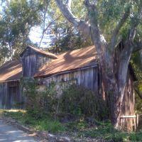 Blackberry Hill-Los Gatos, Лос-Гатос