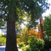 Palo Alto. Bryant St., Менло-Парк