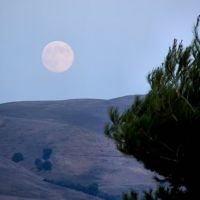 Moonrise Over the Hills Above Milpitas, Милпитас