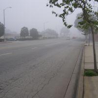 Foggy, Монтерей
