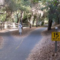 Stevens Creek Trail, Моунтайн-Вью