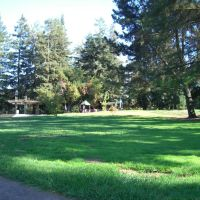 park grass before playground, Моунтайн-Вью