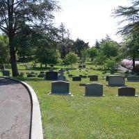 Tulocay Cemetery, Напа