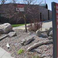 Landscaping outside Tier One bank on N 4th St, Norfolk, Nebraska, Норволк