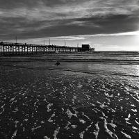 Bọt Biển, Ньюпорт-Бич