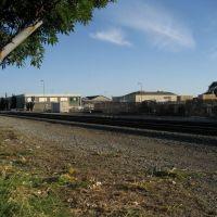Berkeley Tracks, Олбани