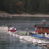 Bass Lake Watersports Crew, Оранж