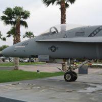 F/A-18 Hornet, Палм-Спрингс
