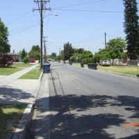 rose street, Парамоунт