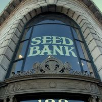 Seed Bank, Petaluma, California, Петалума
