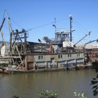 SouthBay tug, Петалума