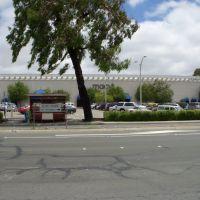 macys in Sunvalley Mall, Плисант-Хилл