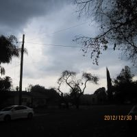 基督教堂, Помона